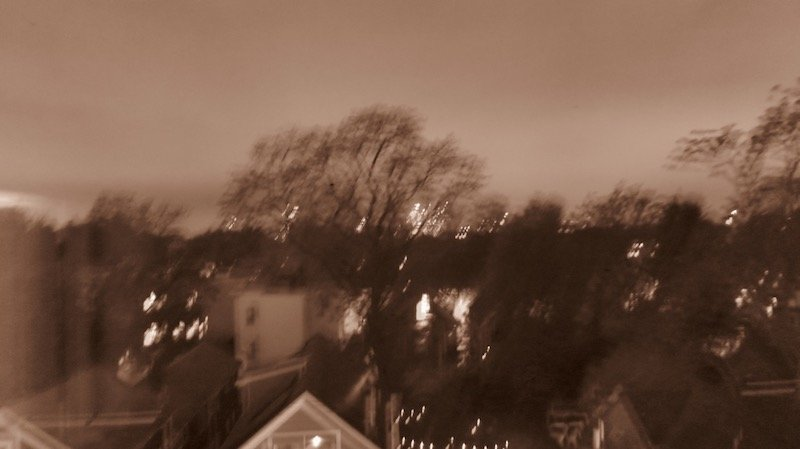 Bobby Vilinsky, Tree Out My Window, Spring Nightfall, at Waltham Open Studios 2020