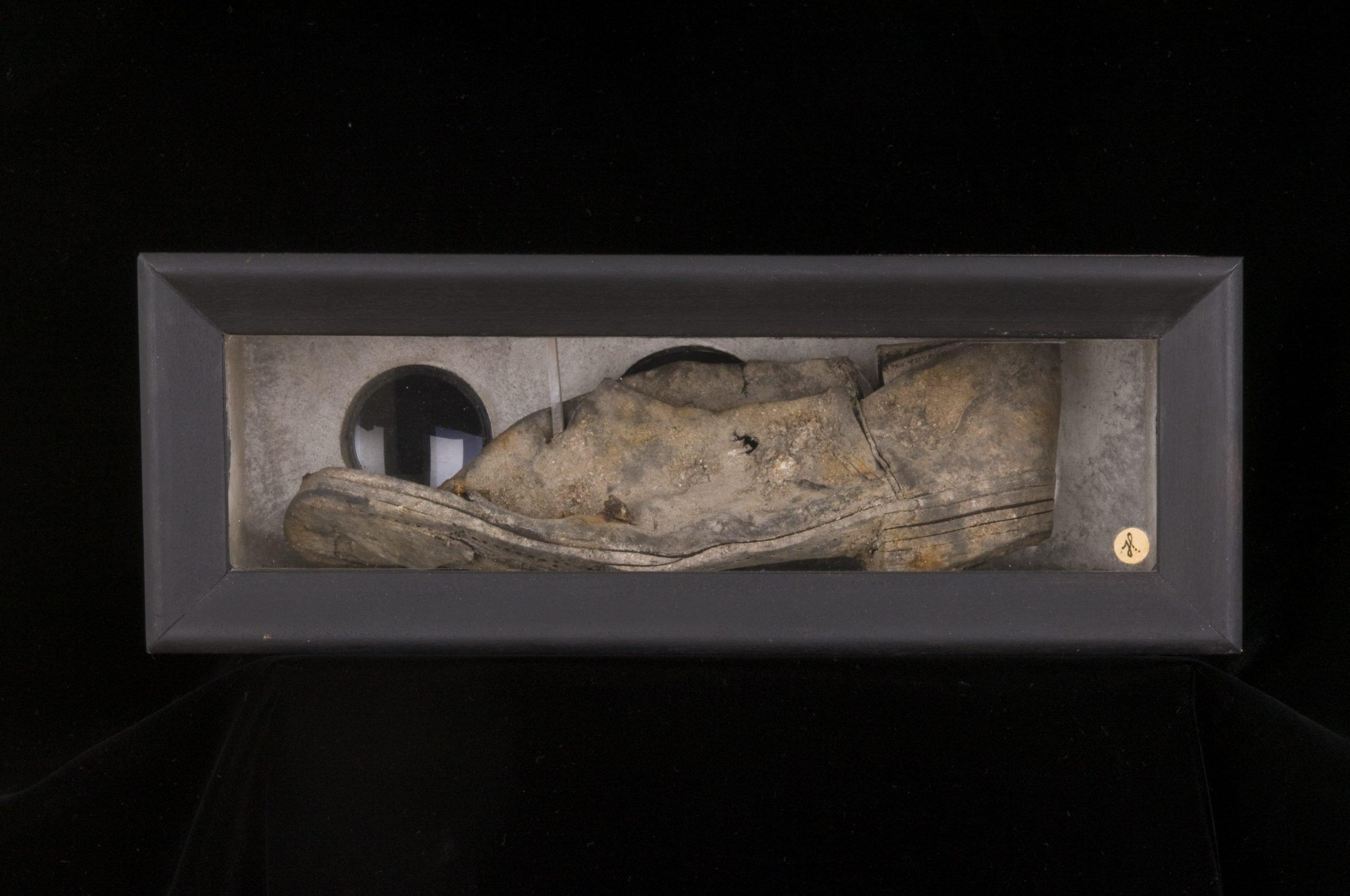 Shoe-Box Jude Heichelbech