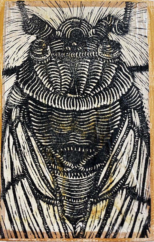 Black and white linoleum cut print of close up of cicada