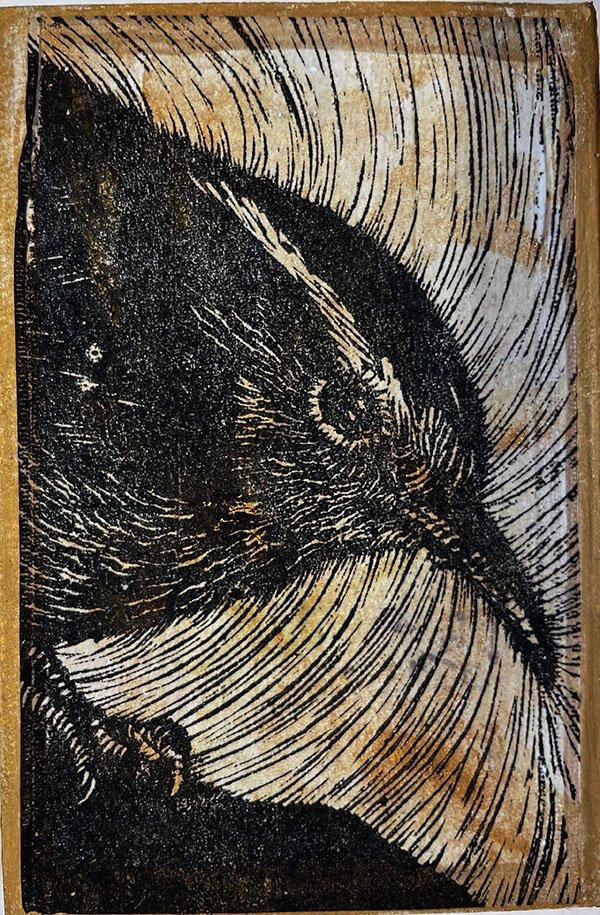Black and white linoleum print of a wren.